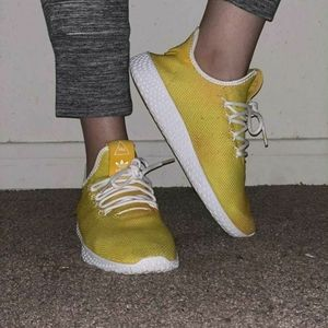 Used Pharell Willams shoes